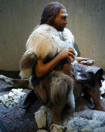 Trabajo de investigación: La evolución humana en la península ibérica