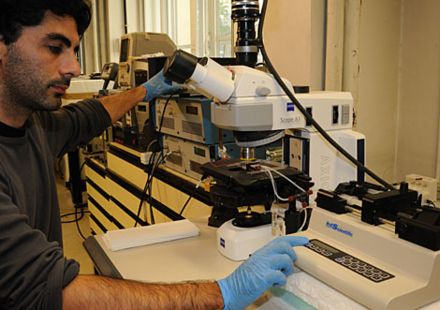Un microchip para extraer las células tumorales