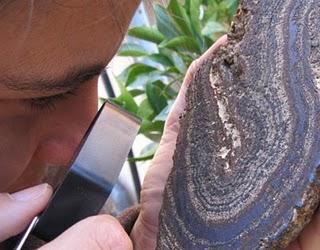 Bacterias de un millón de años en la cueva de El Soplao
