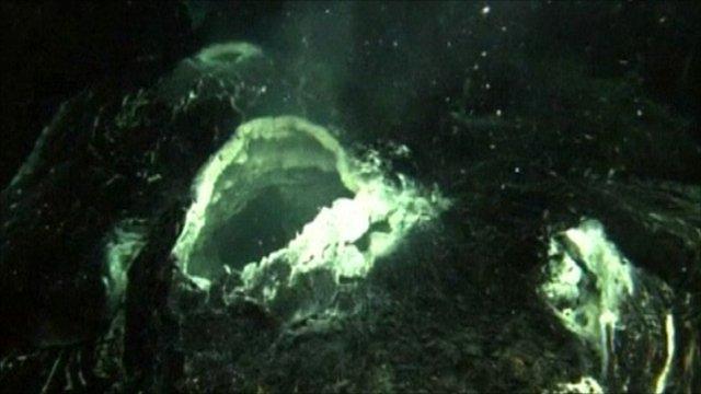 El origen de la vida en la Tierra